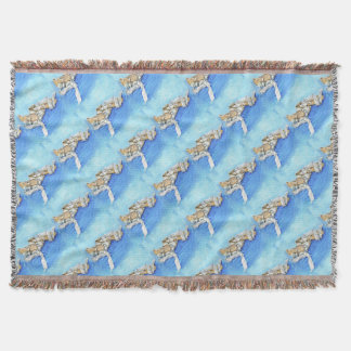 A Pair of Ballet Shoes Throw Blanket