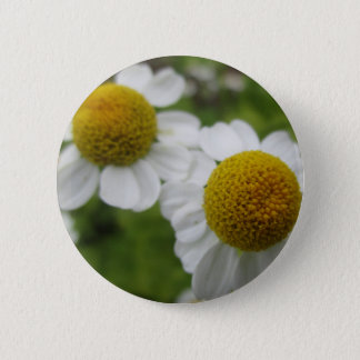 A pair of daisy flowers button