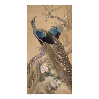 A Pair of Peacocks in Spring by Imao Keinen Perfect Poster
