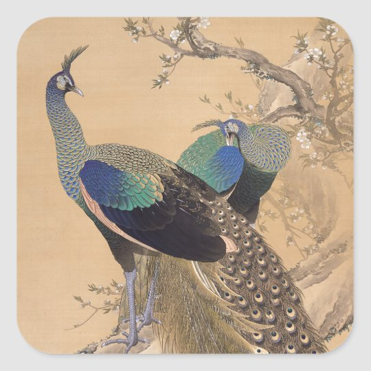 A Pair of Peacocks in Spring by Imao Keinen Square Sticker