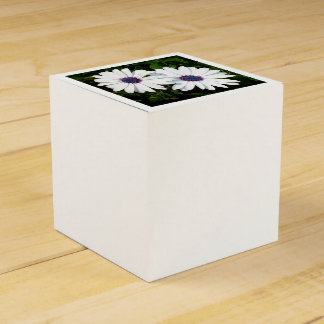 A Pair of Pristine White African Daisies Favor Box