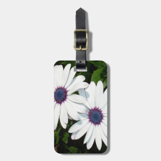 A Pair of Pristine White African Daisies Luggage Tag