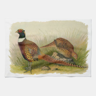 A pair of Ring necked pheasants in a grassy field Kitchen Towel