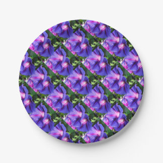 A Pair of Vibrant Morning Glories In Full Bloom 7 Inch Paper Plate