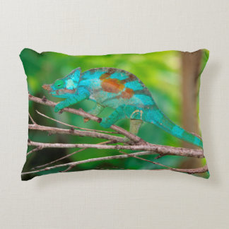 A Parson's Chameleon moving along a branch 2 Accent Pillow