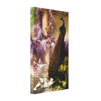 A Peacock and Doves in a Garden Wrapped Canvas