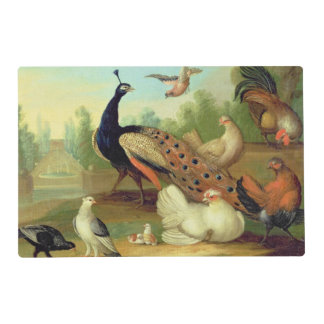 A Peacock, Doves, Chickens and a Jay in a Park Laminated Place Mat