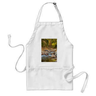 A Perfect Fall Day Standard Apron