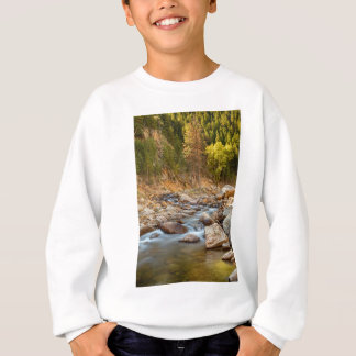 A Perfect Fall Day Sweatshirt