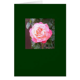 A Personal Rose Card