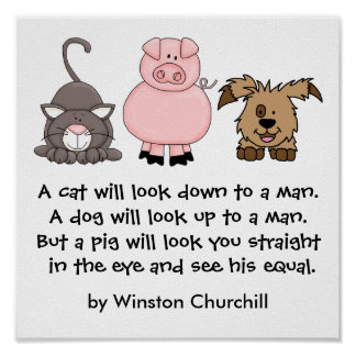 A PIG Quote by Winston Churchill Poster
