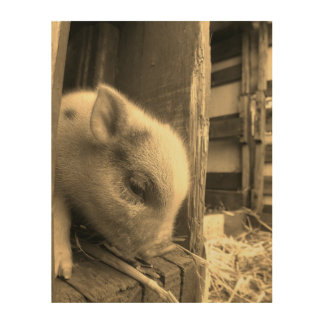 A Piglet Story: Too Cute for Words Wood Canvas