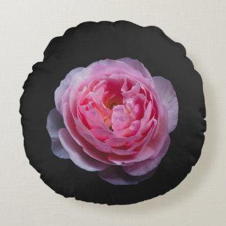 A pink rose flower round pillow