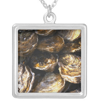 A plate of oysters. silver plated necklace