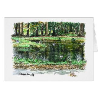 A pond for ducks card