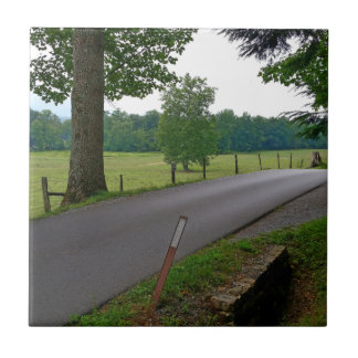 A popular Country Road at Cades Cove The Great Smo Tile