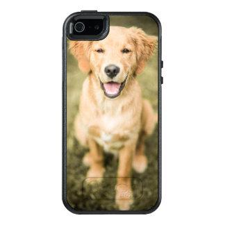 A Portrait Of A Golden Retriever Puppy OtterBox iPhone 5/5s/SE Case