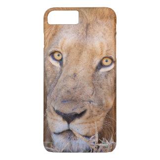 A portrait of a Lion iPhone 7 Plus Case