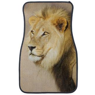 A portrait of a Lion, Kgalagadi Transfrontier Park Floor Mat