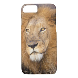 A portrait of a Lion looking into the distance iPhone 7 Case