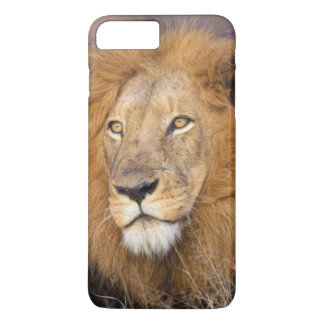 A portrait of a Lion looking into the distance iPhone 7 Plus Case