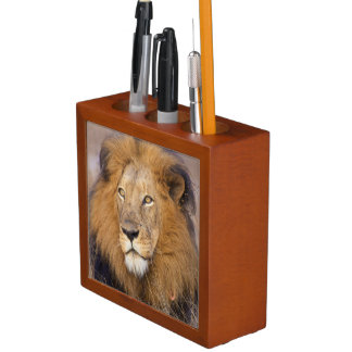 A portrait of a Lion looking into the distance Pencil Holder
