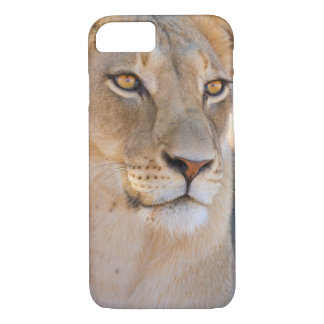 A portrait of a Lioness looking into the distance iPhone 7 Case