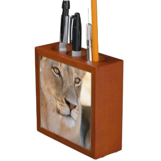 A portrait of a Lioness looking into the distance Pencil/Pen Holder