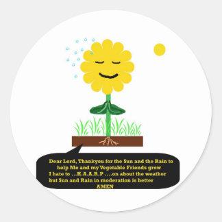 """A Prayer from a Flower""* Classic Round Sticker"