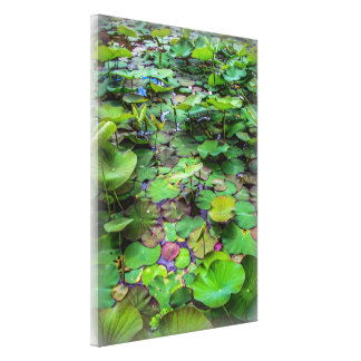 A pretty pond full of lily pads at a water temple canvas print