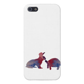 A rabbit and a tortoise iPhone 5/5S case