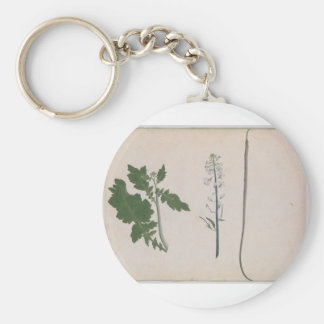 A Radish Plant, Seed, and Flower Keychain