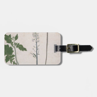 A Radish Plant, Seed, and Flower Luggage Tag