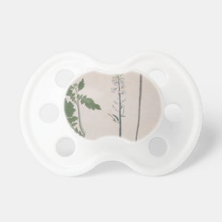 A Radish Plant, Seed, and Flower Pacifier