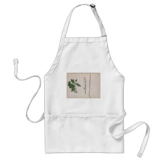A Radish Plant, Seed, and Flower Standard Apron