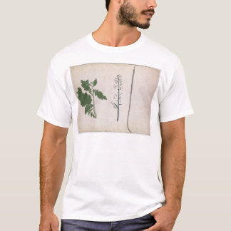A Radish Plant, Seed, and Flower T-Shirt