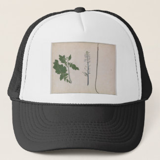 A Radish Plant, Seed, and Flower Trucker Hat