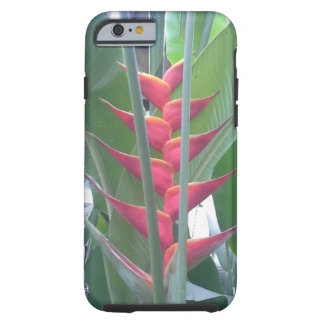 a rain forest exotic on a iphone case