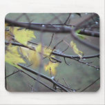 A Rainy Morning In Autumn (Fall) With A Light Bree Mousepads