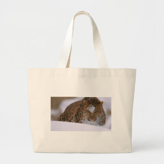 A Rare Amur Leopard Peers Over a Snowy Embankment. Large Tote Bag