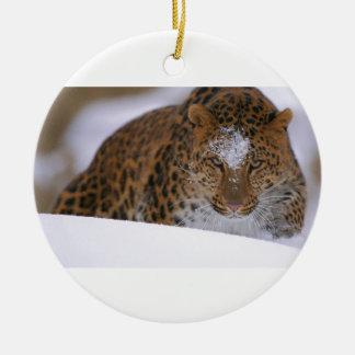 A Rare Amur Leopard Peers Over a Snowy Embankment. Round Ceramic Ornament