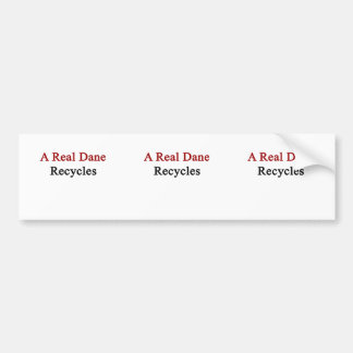 A Real Dane Recycles Bumper Sticker