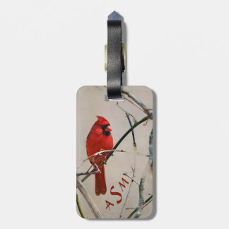 A Red Cardinal Bird on a Branch in the Woods Luggage Tag