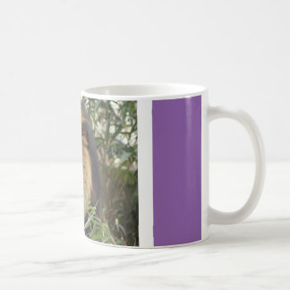 A regal lion to join you for coffee coffee mug