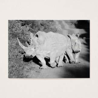 A Rhino mother and her calf in South Africa Business Card