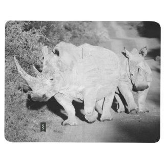 A Rhino mother and her calf in South Africa Journal