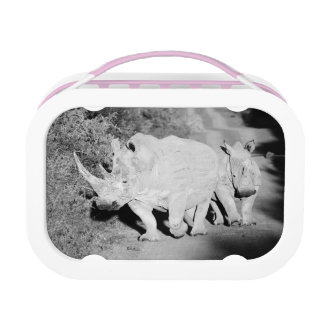 A Rhino mother and her calf in South Africa Lunch Box