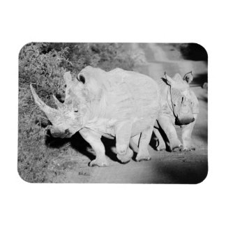 A Rhino mother and her calf in South Africa Magnet