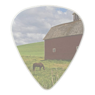 A ride through the farm country of Palouse 3 Acetal Guitar Pick