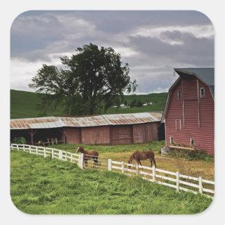 A ride through the farm country of Palouse 4 Sticker